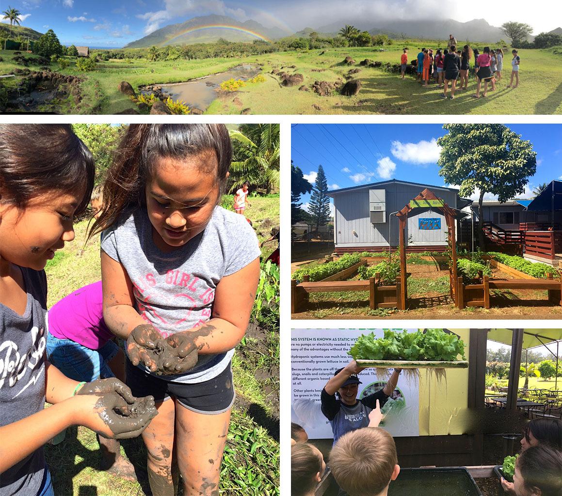 Kōkua Hawaiʻi Foundation Field Trip and Mini-Grants NOW
