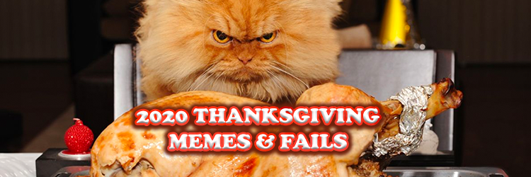 read Top Funny Thanksgiving Memes 2020