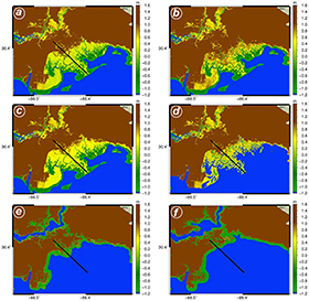 Dynamic Responses, Implications to Coastal Wetlands Under Sea Level Rise