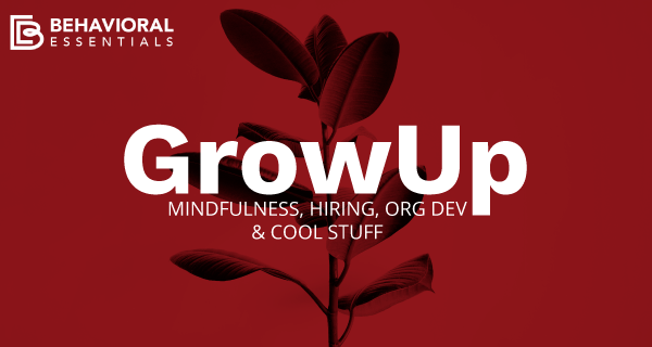 Mindfulness, Hiring, Org Dev & Cool Stuff