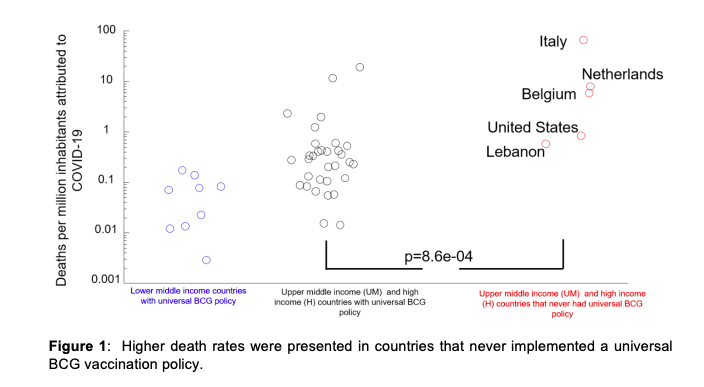 Higher death rates were presented in countries that never implemented a universal BCG vaccination policy