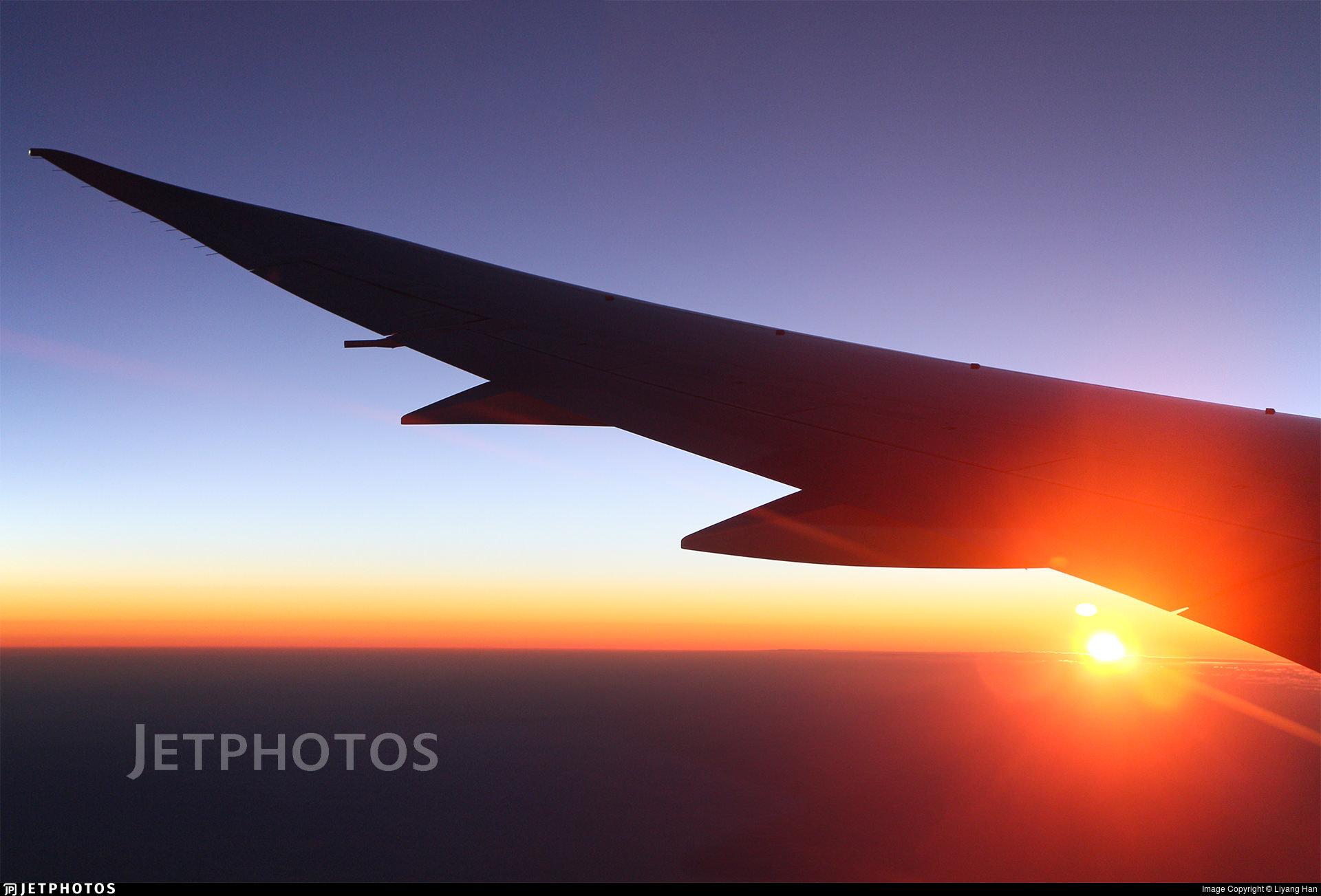 A Qantas 787 above the sunrise