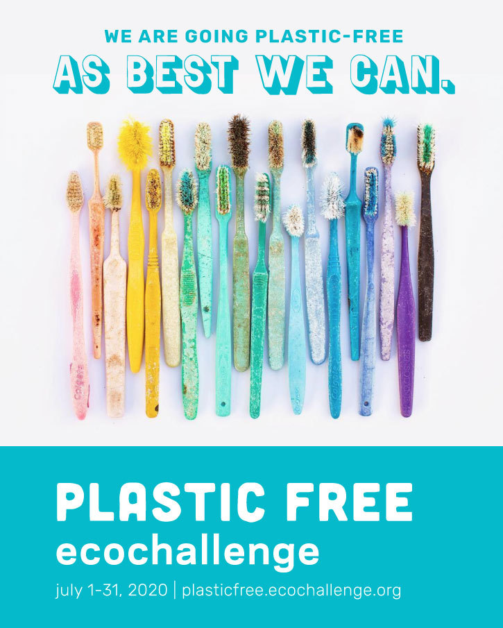 "An image of toothbrushes found on beaches, arranged in order of color. Title above image reads ""We are going plastic free as best we can."""