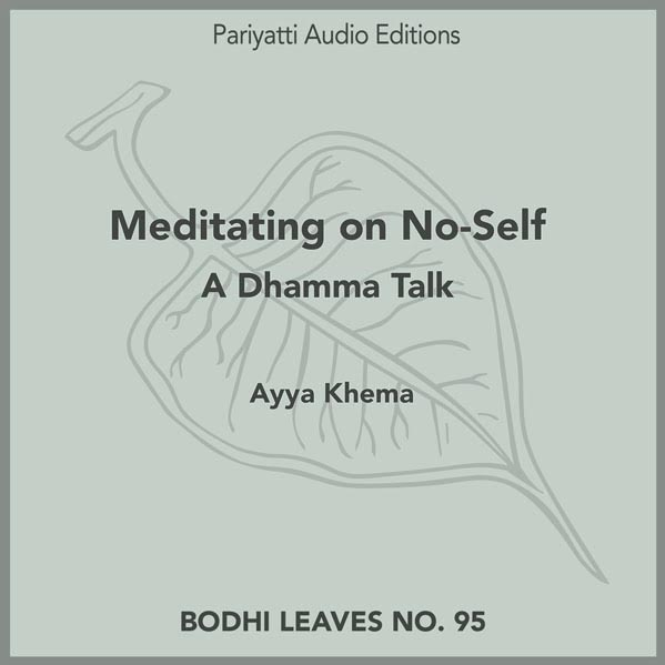 No-self audiobook cover