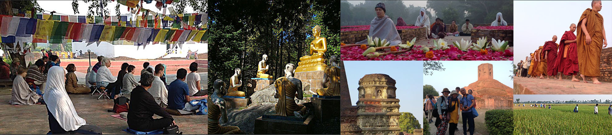 Collage Pariyatti Pilgrimage Images
