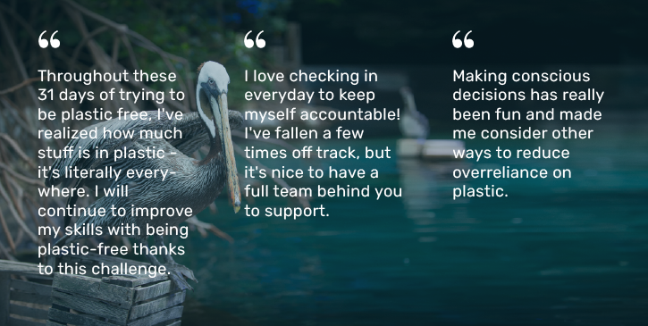 three quotes from plastic free ecochallenge participants