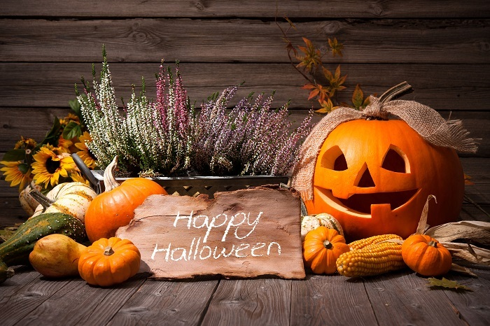 Active Adult Living Newsletter - Happy Halloween
