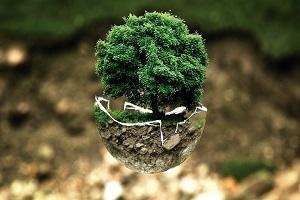 Consider Green Living in Retirement