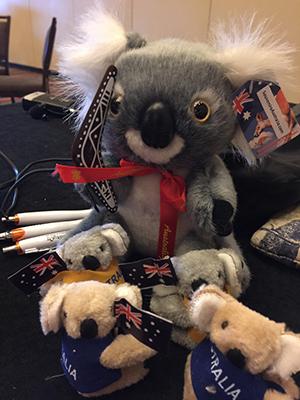 Win a koala!