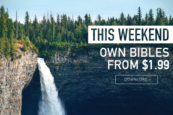 This weekend only own bibles introduction banner