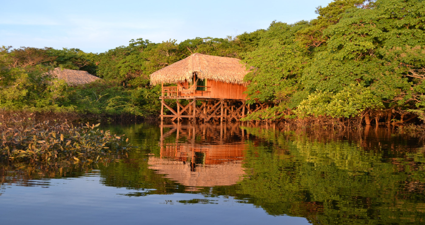 Juma Jungle Lodge - Amazon - Brazil