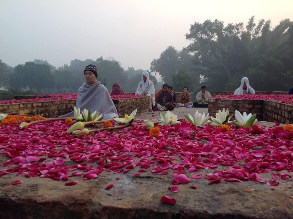 Pariyatti Pilgrims meditating at the Mula Ganda Kuti in Jetavana (the park offered by Anathapindika)