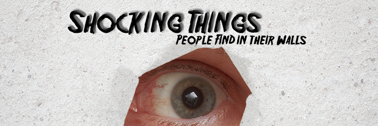 Shocking Things People Found in their Wall in the Last Decade