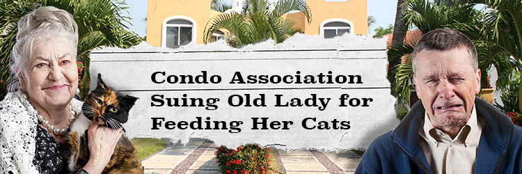 Condo Board Sues Poor Old Lady for Feeding her Cats!