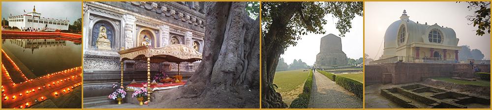 collage pilgrimage