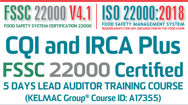 one of the world first lead auditor course two standards, one course