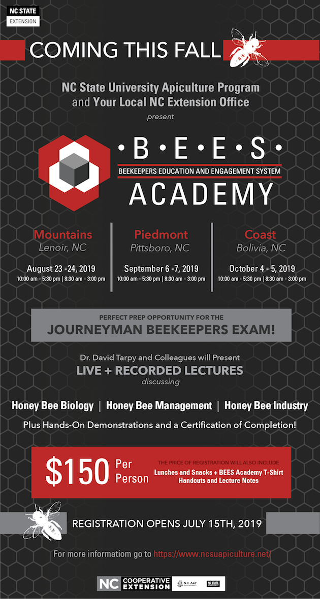 BEES Academy