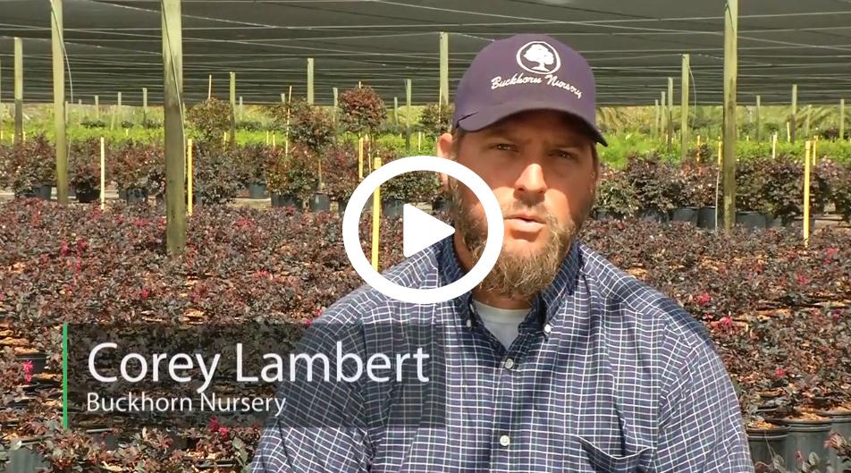Corey Lambert of Buckhorn Nursery, a 2016 CARES farmer.